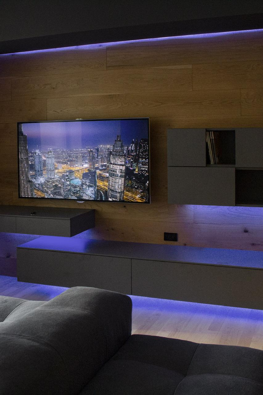 Modern Home Entertainment Center with Wood Wall